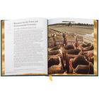 The Economics Book 3659 7