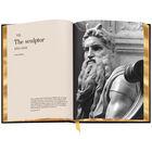 3686 Michelangelo f spr5
