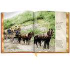 3690 Wild West in Color spd09