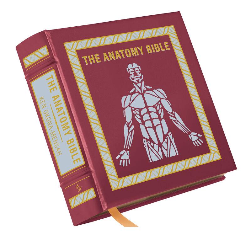 The Anatomy Bible 3682 a cvr
