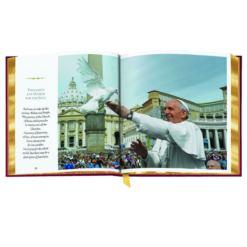 Pope Francis 2934 2