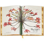 Book of Flowers 3704 b spr1 WEB