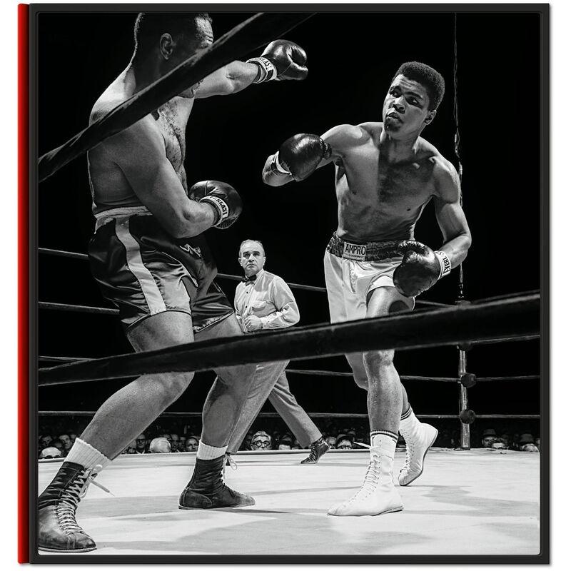 Leifer Boxing 3744 b spr1