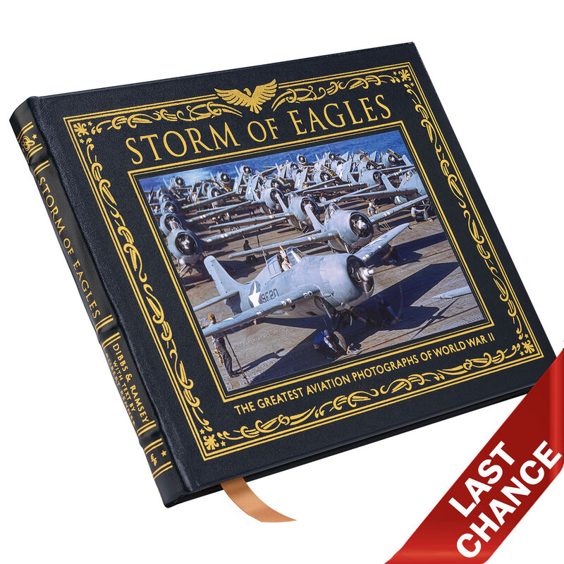 Storm of Eagles 3603 a cover