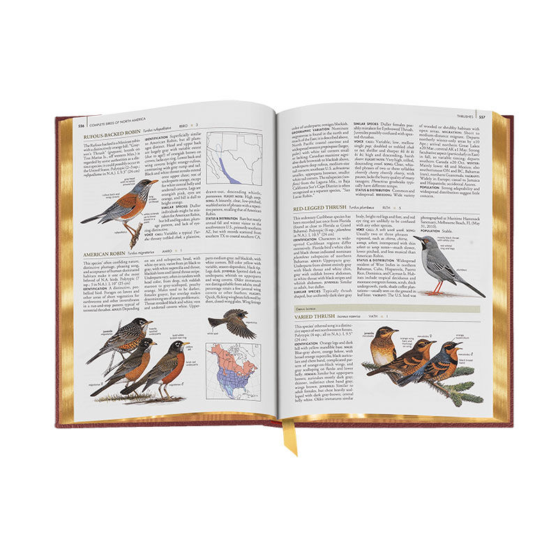 Complete Birds of North America 3596 8