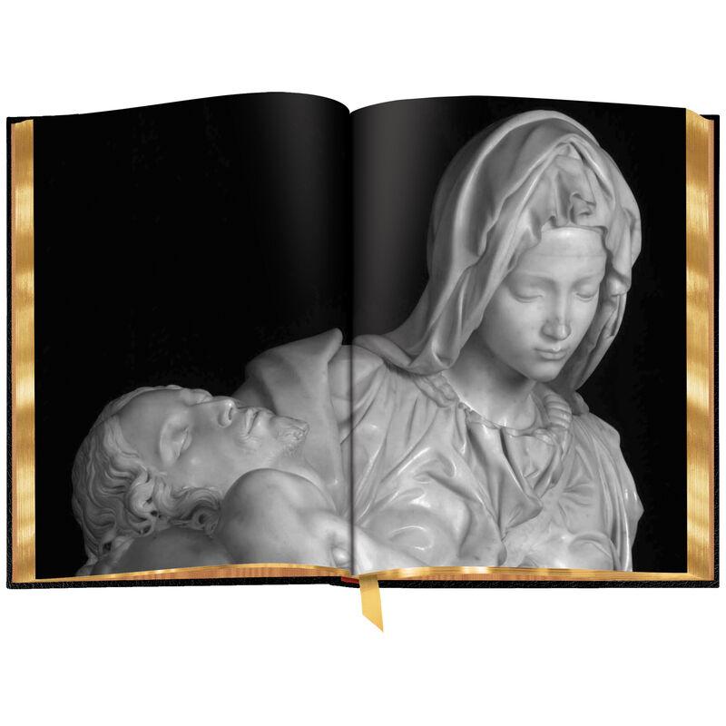 3686 Michelangelo b spr1