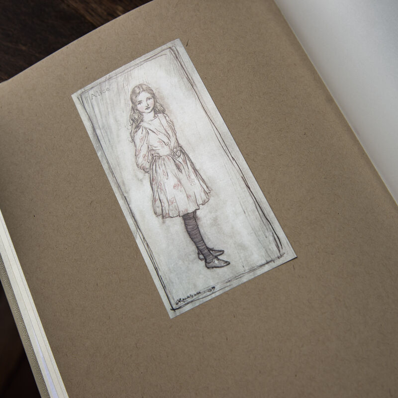Alice In Wonderland 3091 main d flt