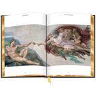 3686 Michelangelo e spr4