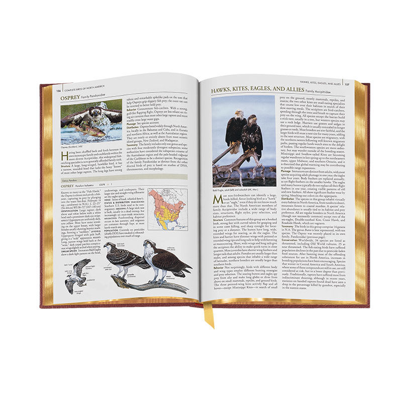Complete Birds of North America 3596 3