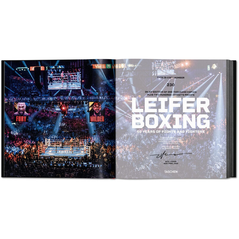 Leifer Boxing 3744 c spr2