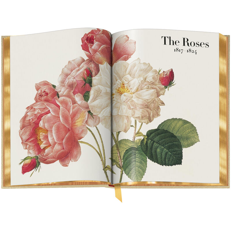 Book of Flowers 3704 d spr3 WEB