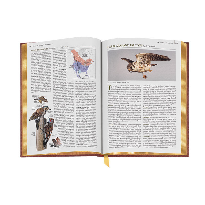 Complete Birds of North America 3596 6