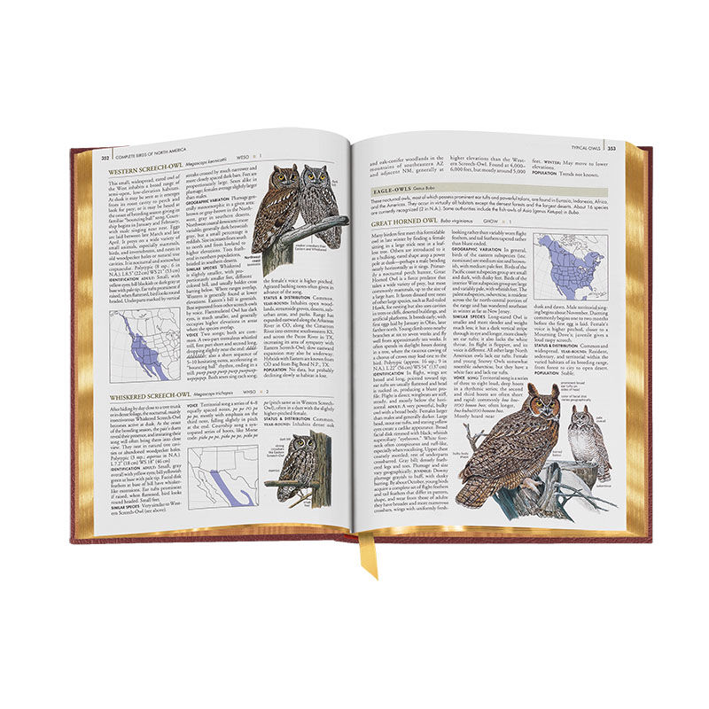 Complete Birds of North America 3596 4