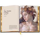 3686 Michelangelo c spr2