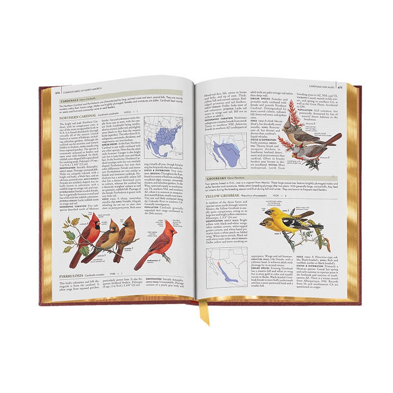Complete Birds of North America 3596 9