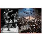 Leifer Boxing 3744 f spr5